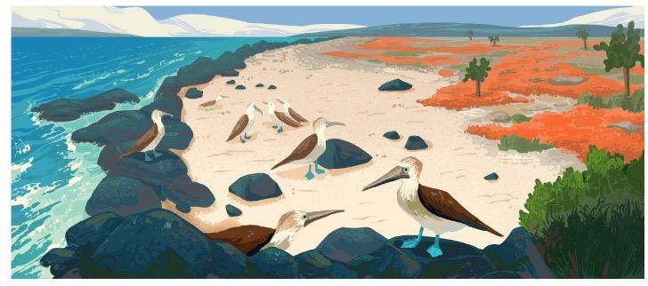 Googleロゴ「ガラパゴス諸島」に