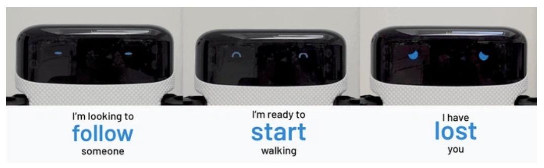 AI搭載の自律型芝刈りロボ「Toadi」がKickstarterで1億7,000万円以上を集めている