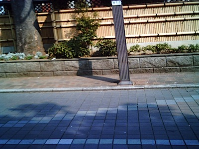 vq1005_2008313_IMG_0006.JPG