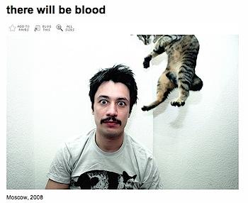 忍者猫、あらわる。