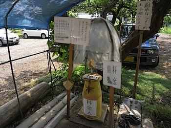 hiwada_20080619_407.JPG