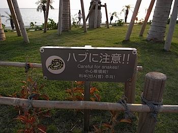okinawa_03309301.JPG