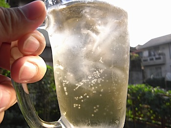 summer_highball_R0016330.JPG