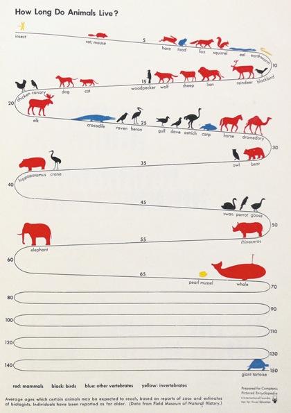 動物の寿命を表した「アイソタイプ(ISOTYPE)」