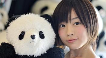 PANDA 1/2ミュージックビデオ「PANDA! PANDA! PANDA!」が札幌ビエンナーレ・プレ企画展に出展中!