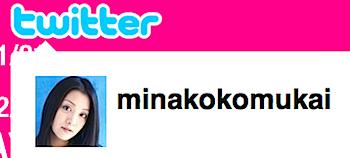 小向美奈子、ツイッターを始める