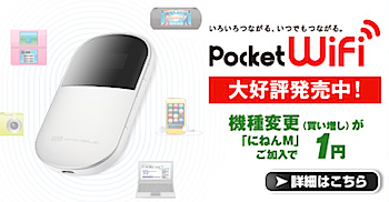 イーモバイルに利用料金や「Pocket WiFi」買い増しについて質問した