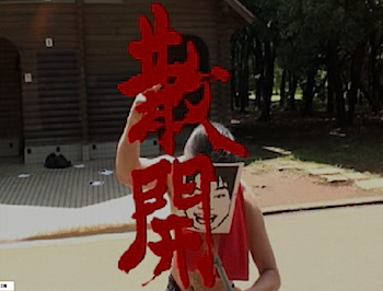 2010-06-09_1137.png