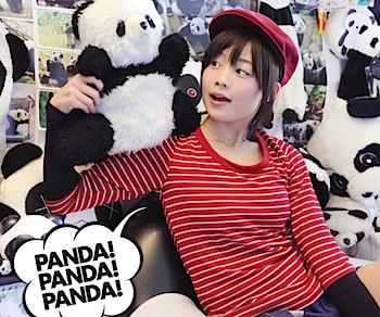 PANDA 1/2新曲「PANDA! PANDA! PANDA!」ビデオクリップをUSTで公開
