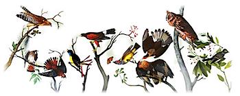 Googleロゴ「John James Audubon(ジョン・ジェームズ・オーデュボン)」に