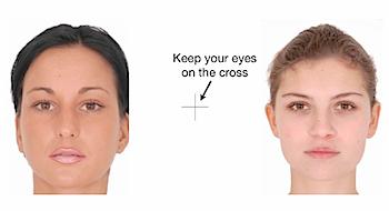 新しく発見された目の錯覚「一瞬で切り替えた顔の歪み効果」