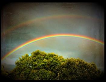 iPhoneで撮影した虹の写真