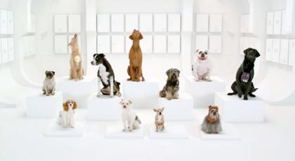 犬の鳴き声でスターウォーズを再現した動画