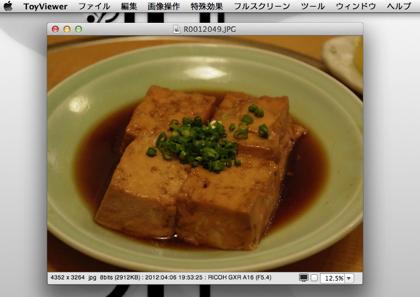 画像にモザイクをかけるMac用画像編集ソフト「ToyViewer」