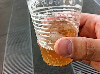 beer_keyaki_6296.JPG