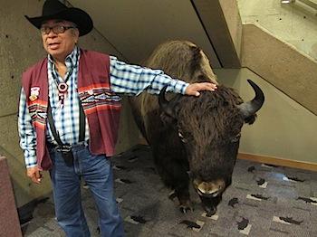 buffalo_jump_6534.JPG