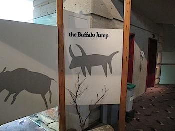 buffalo_jump_6556.JPG
