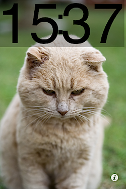 cat_too_much_01862.PNG