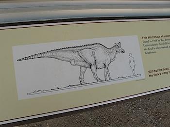 dinosaur_provincial_park_6169.JPG