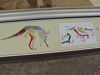 dinosaur_provincial_park_6170.JPG