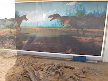 dinosaur_provincial_park_6178.JPG