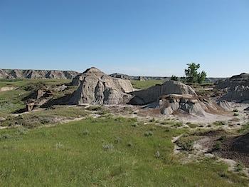dinosaur_provincial_park_6182.JPG