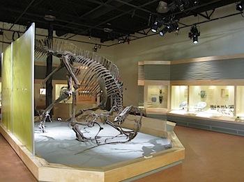 dinosaur_provincial_park_6218.JPG