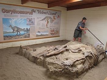 dinosaur_provincial_park_6295.JPG