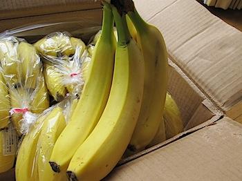dole_banana_030798.JPG