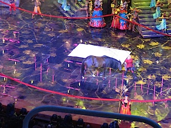 grand_stage_show_7155.JPG