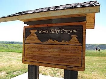 【ネタフル・カナダ支局】Horse Thief Canyon(Badlands)