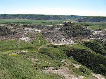 horse_thief_canyon_6074.JPG
