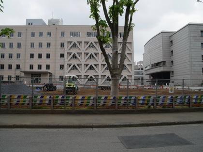 Kobaton cafe 2480