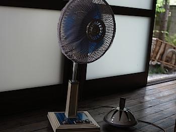 nagatoro_11163.JPG