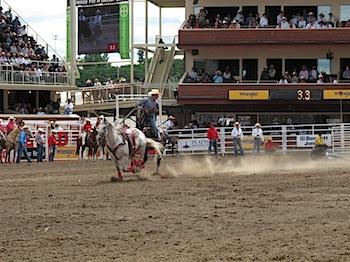 rodeo_6792.JPG