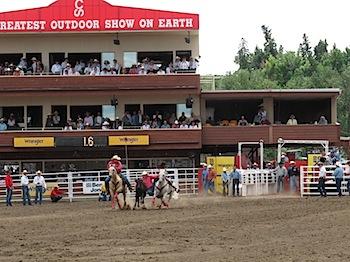 rodeo_6793.JPG