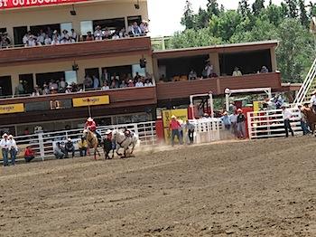 rodeo_6796.JPG