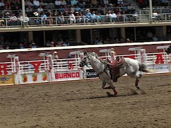 rodeo_6800.JPG