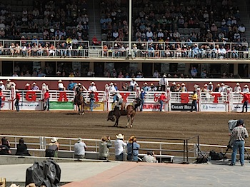 rodeo_6806.JPG
