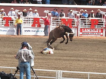 rodeo_6808.JPG