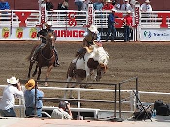rodeo_6810.JPG