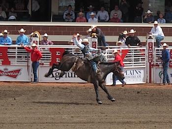 rodeo_6811.JPG