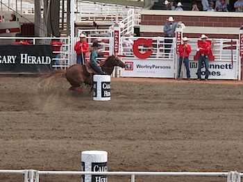 rodeo_6818.JPG