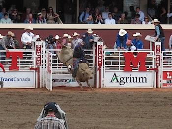rodeo_6821.JPG