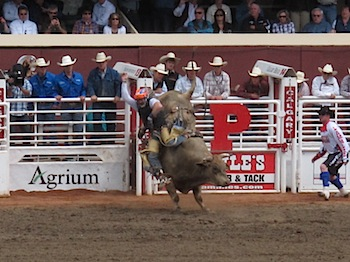 rodeo_6825.JPG