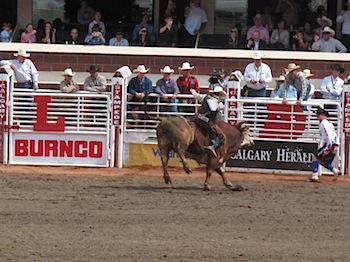 rodeo_6827.JPG