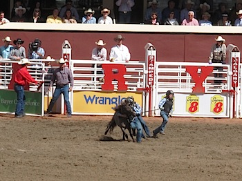 rodeo_6828.JPG