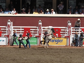 rodeo_6831.JPG