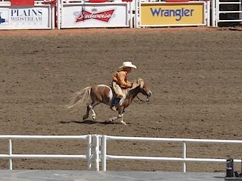 rodeo_6834.JPG
