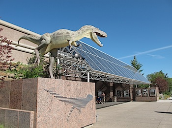【ネタフル・カナダ支局】ロイヤル・ティレル恐竜学博物館(Royal Tyrrell Museum)の見事すぎる化石に感動した!